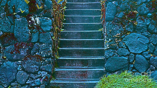 Manoa Stairs by Lisa Cortez