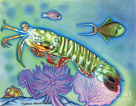 Mantis Shrimp by Taryn  Libby
