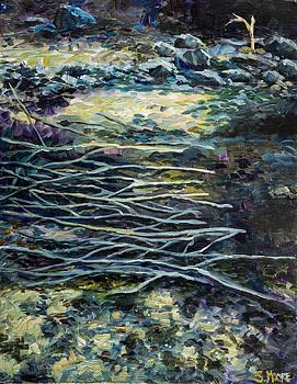 Manzanita Fire Twigs by Susan Moore
