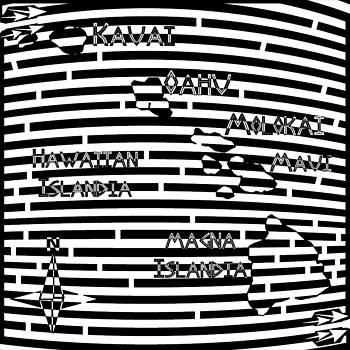 Yonatan Frimer Maze Artist - Map of Hawaii Maze
