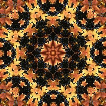 Valerie Kirkwood - Maple Leaf Kaleidoscope 1