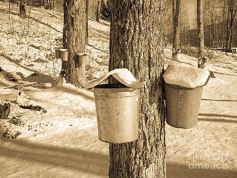 Edward Fielding - Maple Sap Buckets
