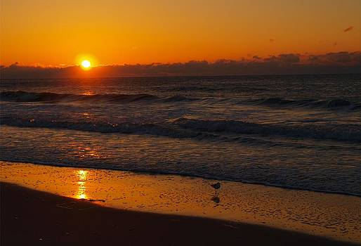 March Sunrise  by Kathleen Palermo