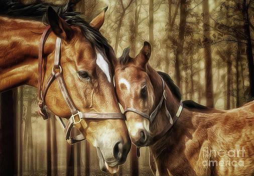 Mare and Foal by Shawna Mac by Shawna Mac
