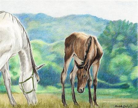 Mare and Foal by Charlotte Yealey