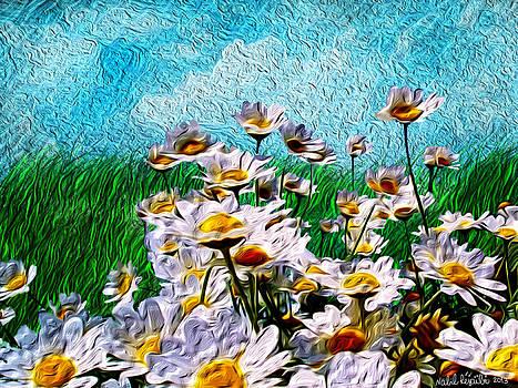Marguerites by Nabil REJAIBI