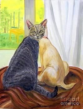 Maria's Cats by Madeleine Prochazka
