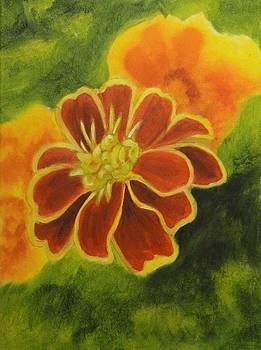 Marigold by Maureen Hargrove