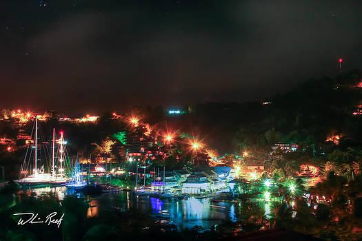William Reek - Marigot Bay At Night