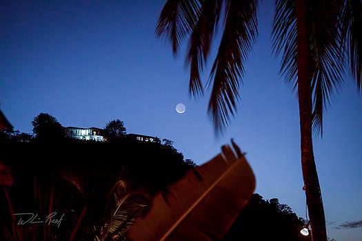 Marigot Moon by William Reek
