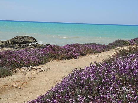 Marina Di Modica Sicily by Pauline Margarone