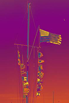 Bill Owen - Marina Flags 02