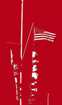 Bill Owen - Marina Flags
