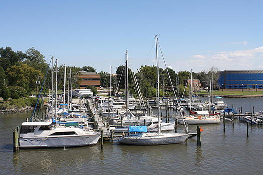 Marina on Hampton River by James Lawson