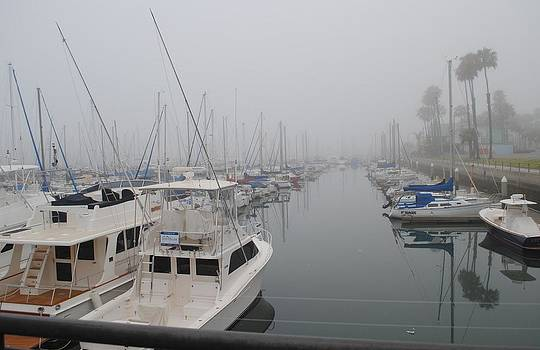Marine Fog in Long Beach by Jill Baum
