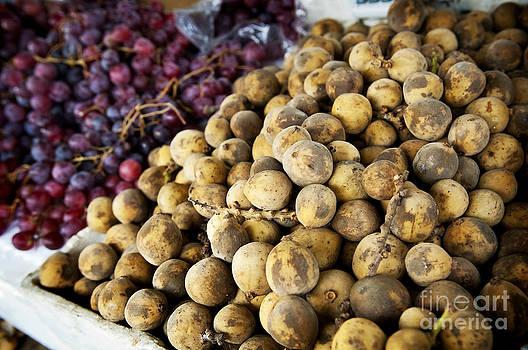 Tim Hester - Market Fruit