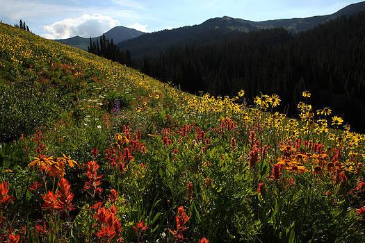 Susan Rovira - Maroon Bells Wilderness