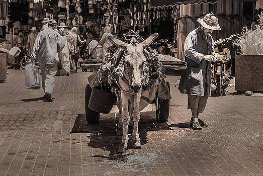 Marrakech Sounk Donkey Cart by Ellie Perla