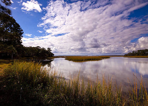 Marsh and Sky by Michael Ray