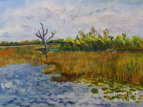 Donna Walsh - Marsh at Green Cay