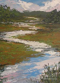 Marsh at Head's Pond by Beverly Belanger
