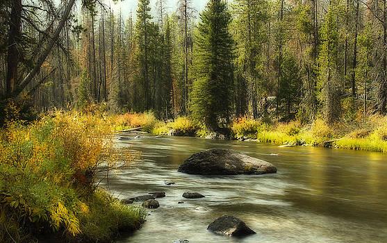 Marsh Creek by Rick Otto