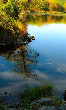 Marsh Creek by Wanda J King