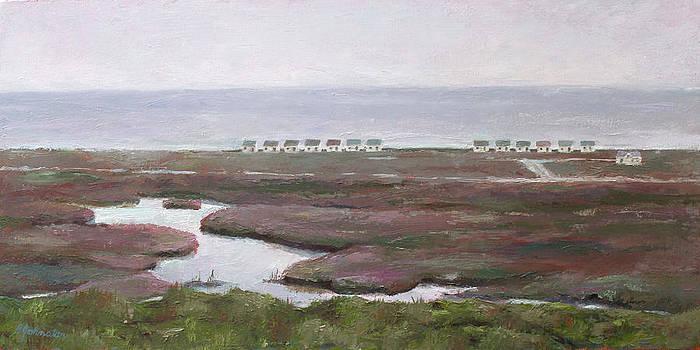 Marsh in the Mist by Beth Johnston
