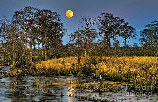 Pawleys Island Marsh Moon by Mike Covington