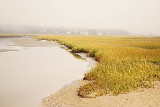 Joy Bradley - Marsh - Ogunquit River