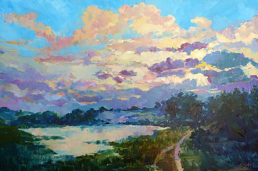Marsh on Carrot Island North Carolina by Azhir Fine Art