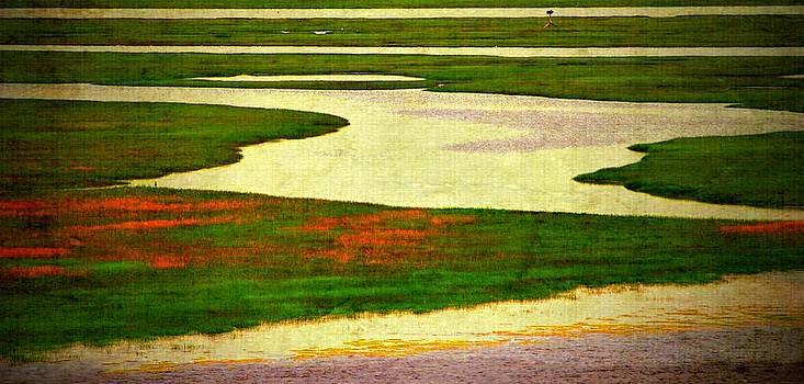 Marysue Ryan - marsh scene