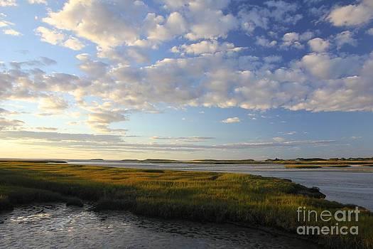 Marsh Sunset by Jim Gillen