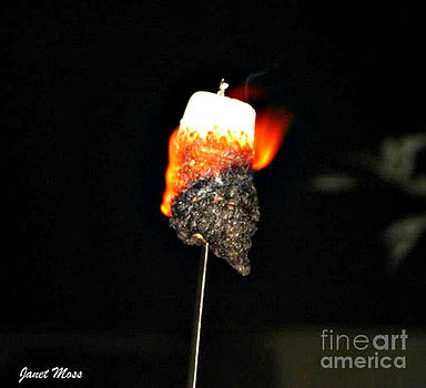 Marshmellow on fire by Janet Moss