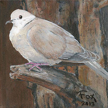 Martina's Dove by Susan Fox