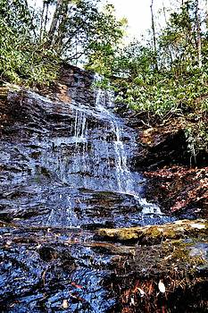 Martin's Mine Trail Waterfall by Tara Potts