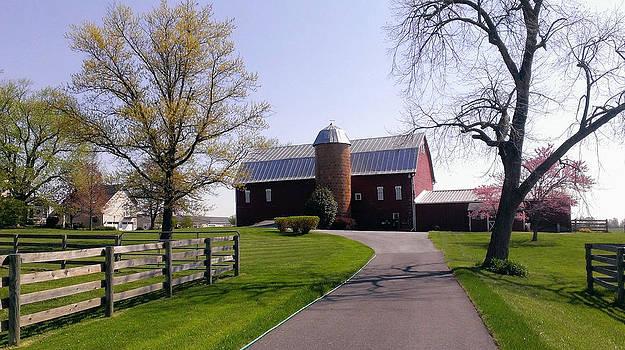 Kathy McCabe - Maryland Barn in Spring