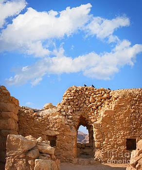 Masada Fortress by Stella Levi