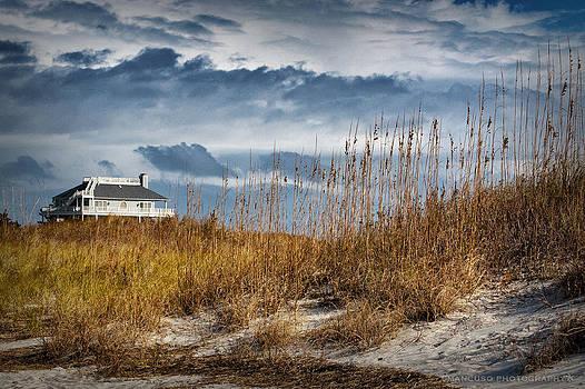 Masonboro Dunes by Phil Mancuso