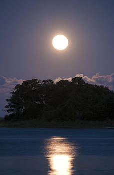 Masonboro Moonrise by Phil Mancuso