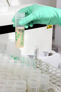 Mass Spectrometry Analysis by Public Health England