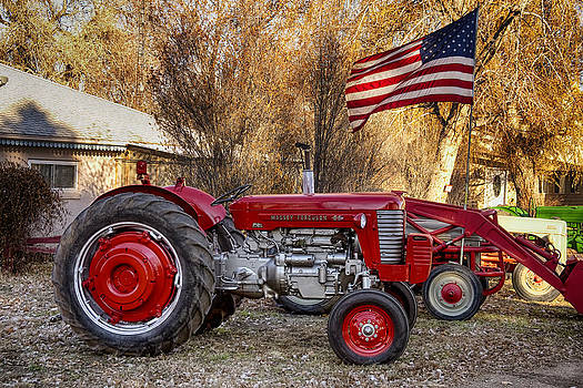 James BO  Insogna - Massey -  Feaguson 65 Tractor with USA Flag