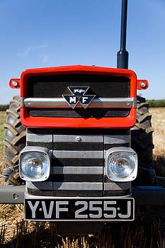 Massey Ferguson 135 vintage tractor by Paul Lilley