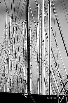 Masts 2 by Alan Oliver