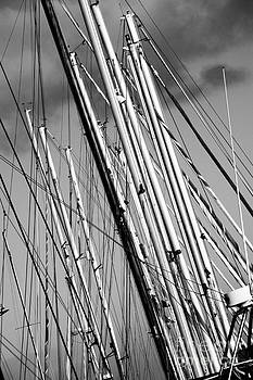 Masts 3 by Alan Oliver