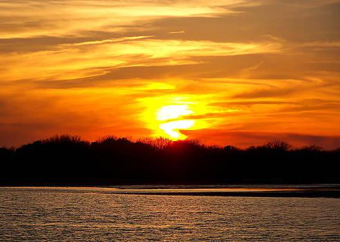 Matagorda Sunset by Shey Stitt