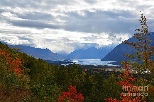 Kate Avery - Matanuska Glacier
