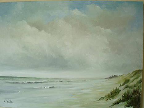 Matanzas Inlet by Carol Thornton