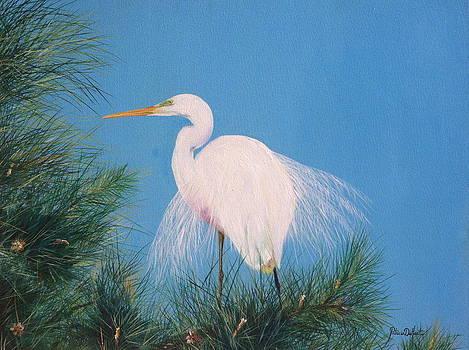 Mating Season by Patricia DeHart