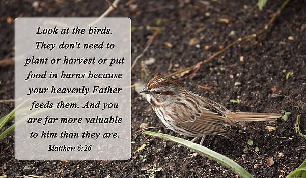 Matthew 6 26 by Inspirational  Designs